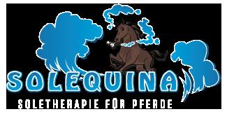 SoleTherapie für Pferde im Reha-Zentrum Hochrhein (bei Waldshut-Tiengen, direkt an der Schweizer Grenze)
